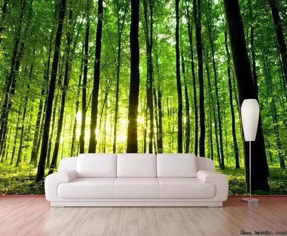 墙面装饰教程让墙面似美景【成都装修设计公司】